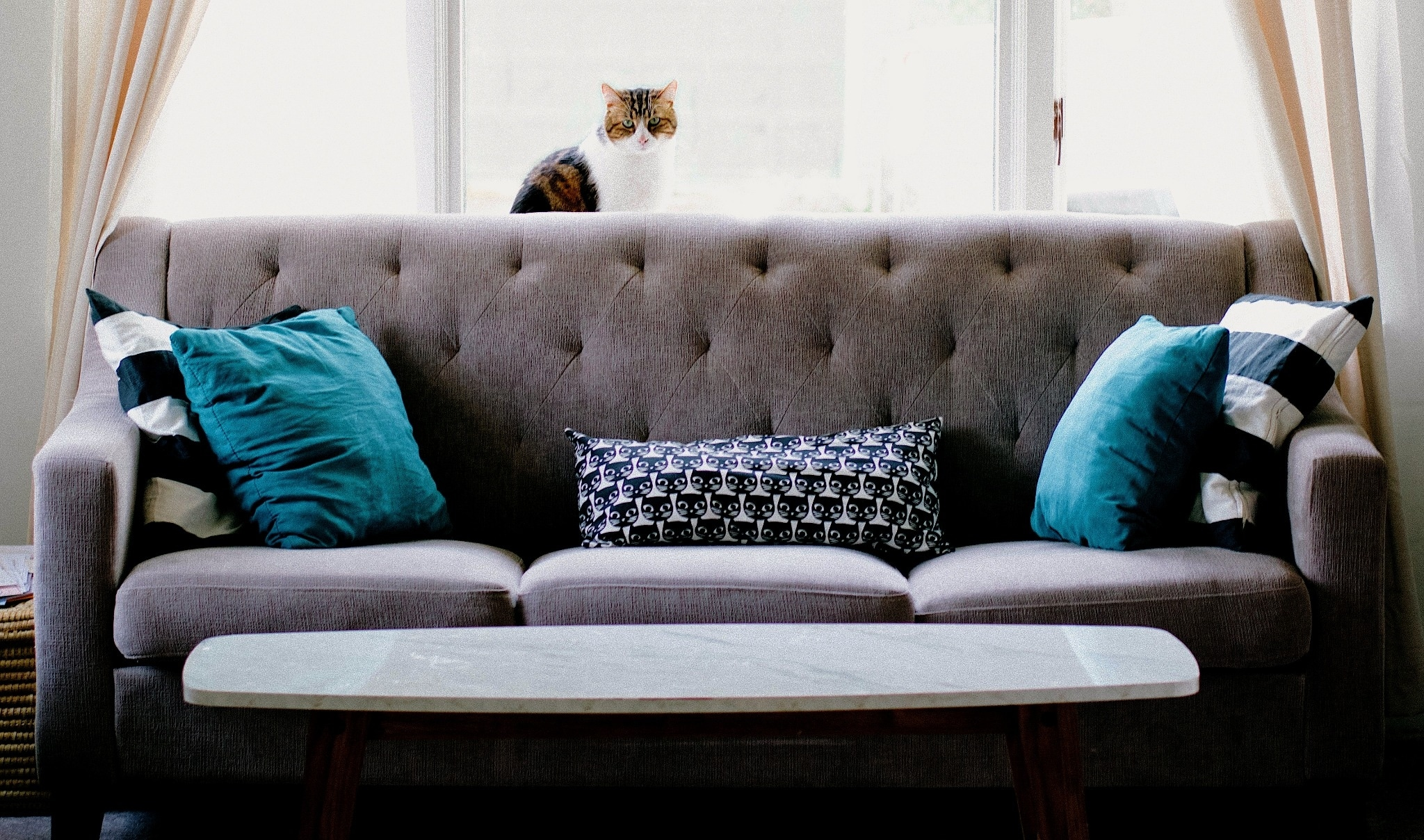 Couch-in-a-Box: The Best Modular Sofa Brands that Deliver to Your Door, Plus Discounts for Each
