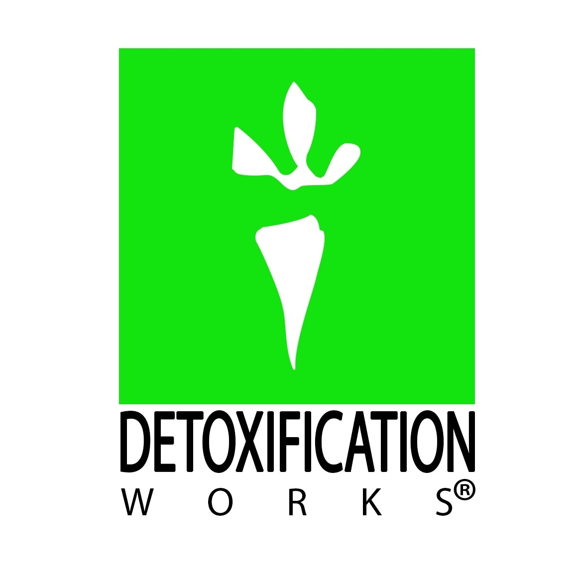 @detoxificationworks