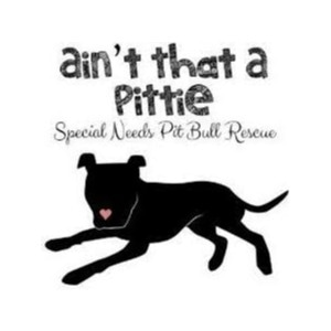Ain't That A Pittie promo codes