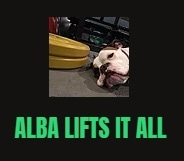 Alba Lifts It All promo codes