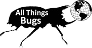 All Things Bugs promo codes