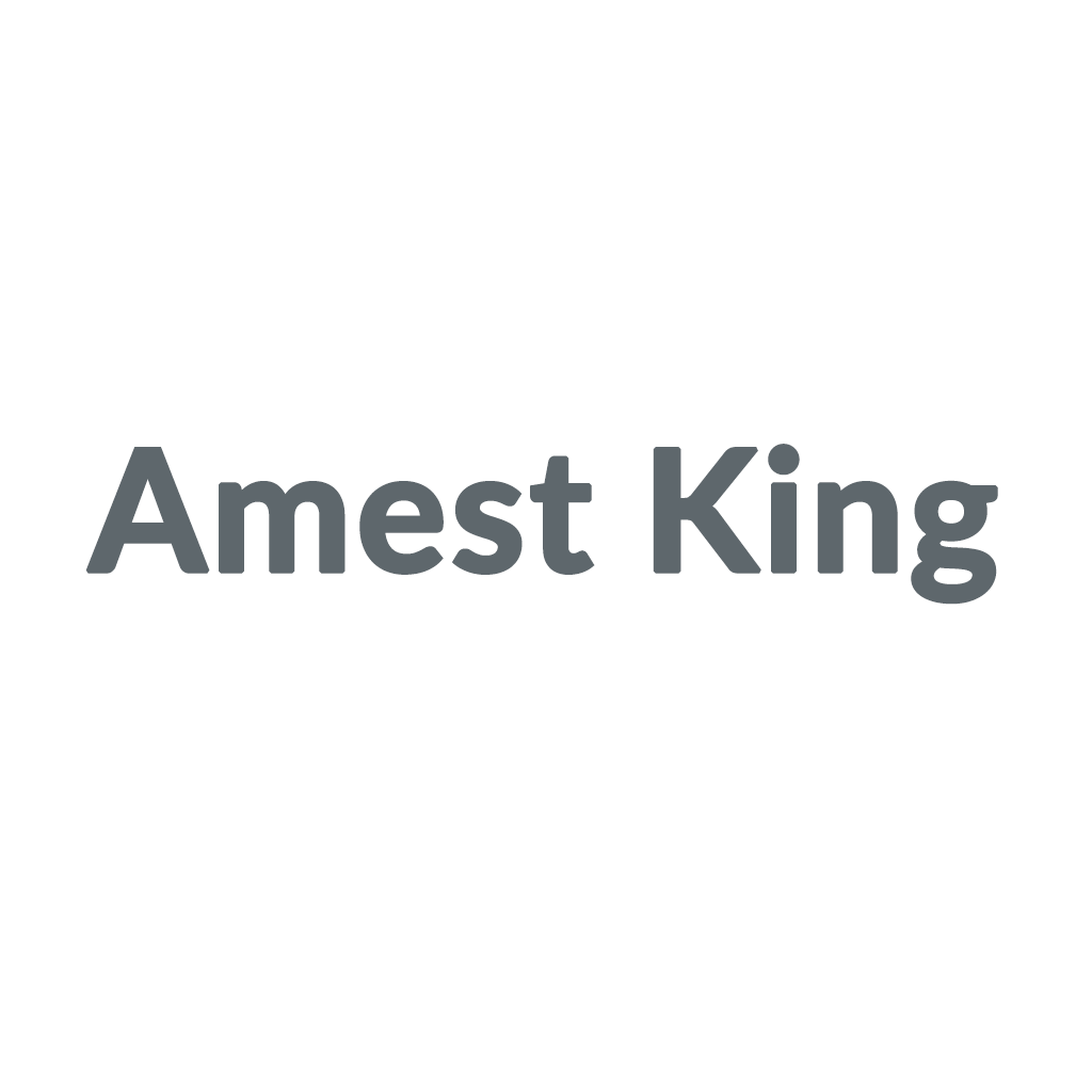 Amest King promo codes