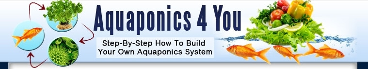 Aquaponics 4 You promo codes
