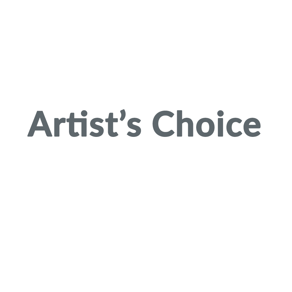 Artist's Choice promo codes