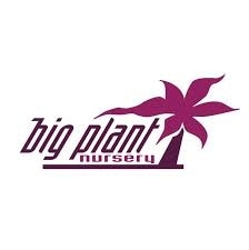 Big Plant Nursery promo codes