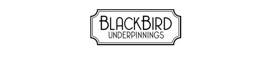BlackBird underpinnings promo codes