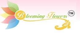 Blooming Flowerz promo codes