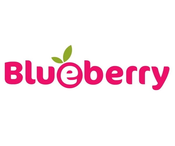 Blueberry Diapers promo codes