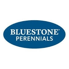 Bluestone Perennials promo codes