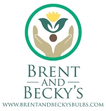 Brent and Becky's