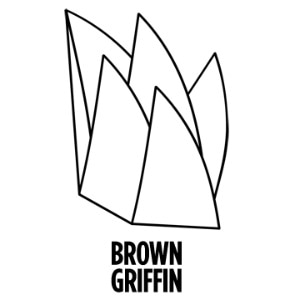 Brown Griffin promo codes