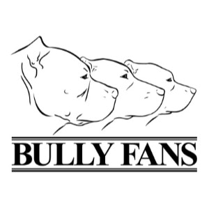 Bully Fans promo codes