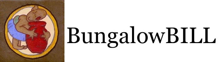 Bungalow Bill promo codes