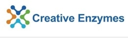 Creative Enzymes promo codes