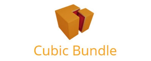 Cubic Bundle