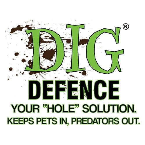 Dig Defence promo codes