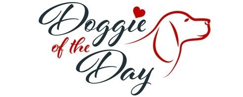 Doggie of the Day promo codes
