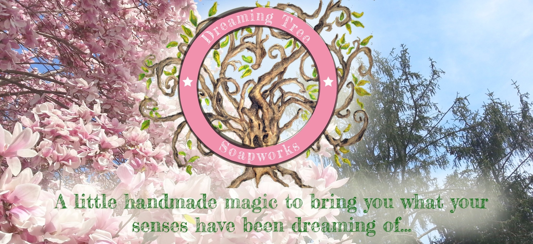 Dreaming Tree Soaps promo codes