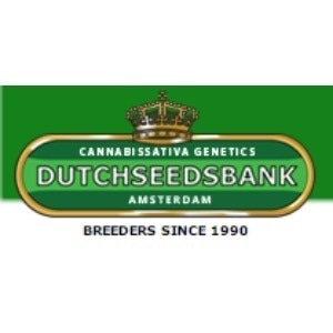 Dutchseedsbank promo codes