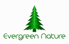 Evergreen Nature promo codes