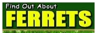 Find Out About Ferrets promo codes
