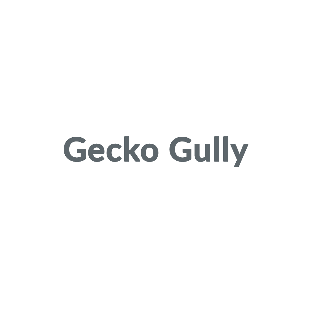 Gecko Gully promo codes