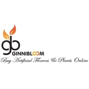 Ginni Bloom promo codes