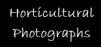 Horticultural Photographs