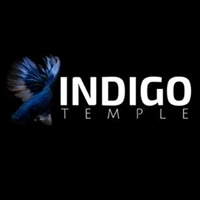 Indigo Temple promo codes