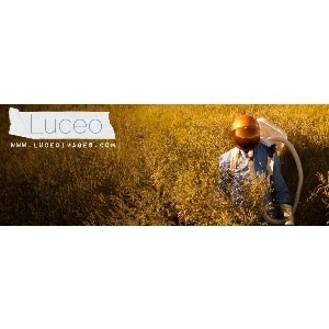 Luceo Images promo codes