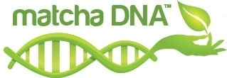 Matcha DNA promo codes