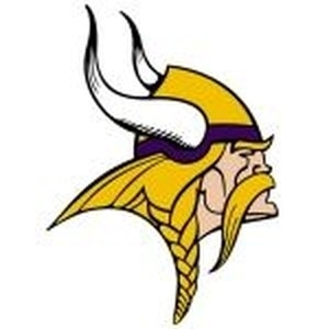 Minnesota Vikings promo codes