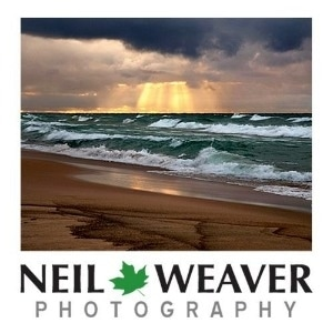 Neil Weaver Photography promo codes