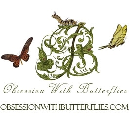 Obsession with Butterflies promo codes