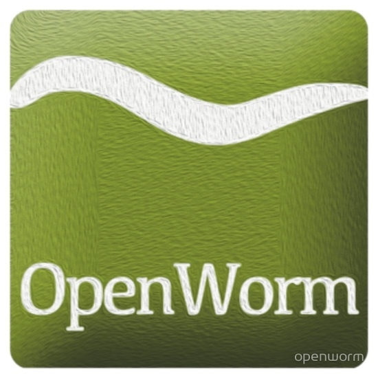 Open Worm promo codes