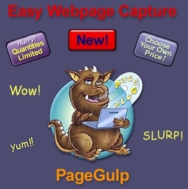 PageGulp promo codes
