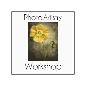 Photo Artistry Workshop promo codes