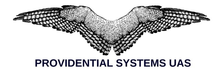 Providential System AUS promo codes