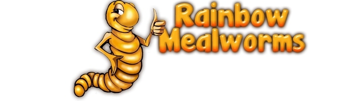 Rainbow Mealworms promo codes