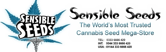 Sensible Seeds promo codes