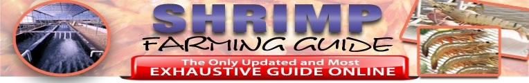 Shrimp Farming Guide promo codes