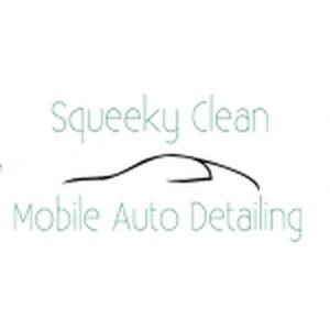 Squeeky Clean Mobile Auto Detailing promo codes