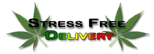 Stress Free Delivery promo codes