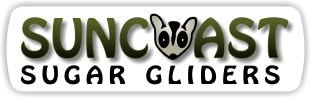 Sun Coast Sugar Gliders promo codes