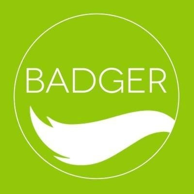 The Badger promo codes