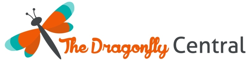 The Dragonfly Central promo codes