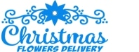 Christmas Flowers Delivery promo codes