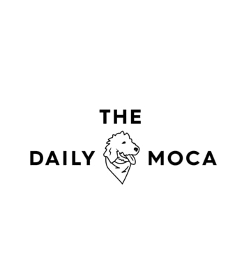 The Daily Moca  promo codes