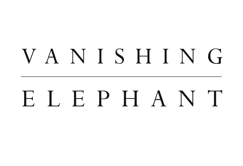 Vanishing Elephant promo codes