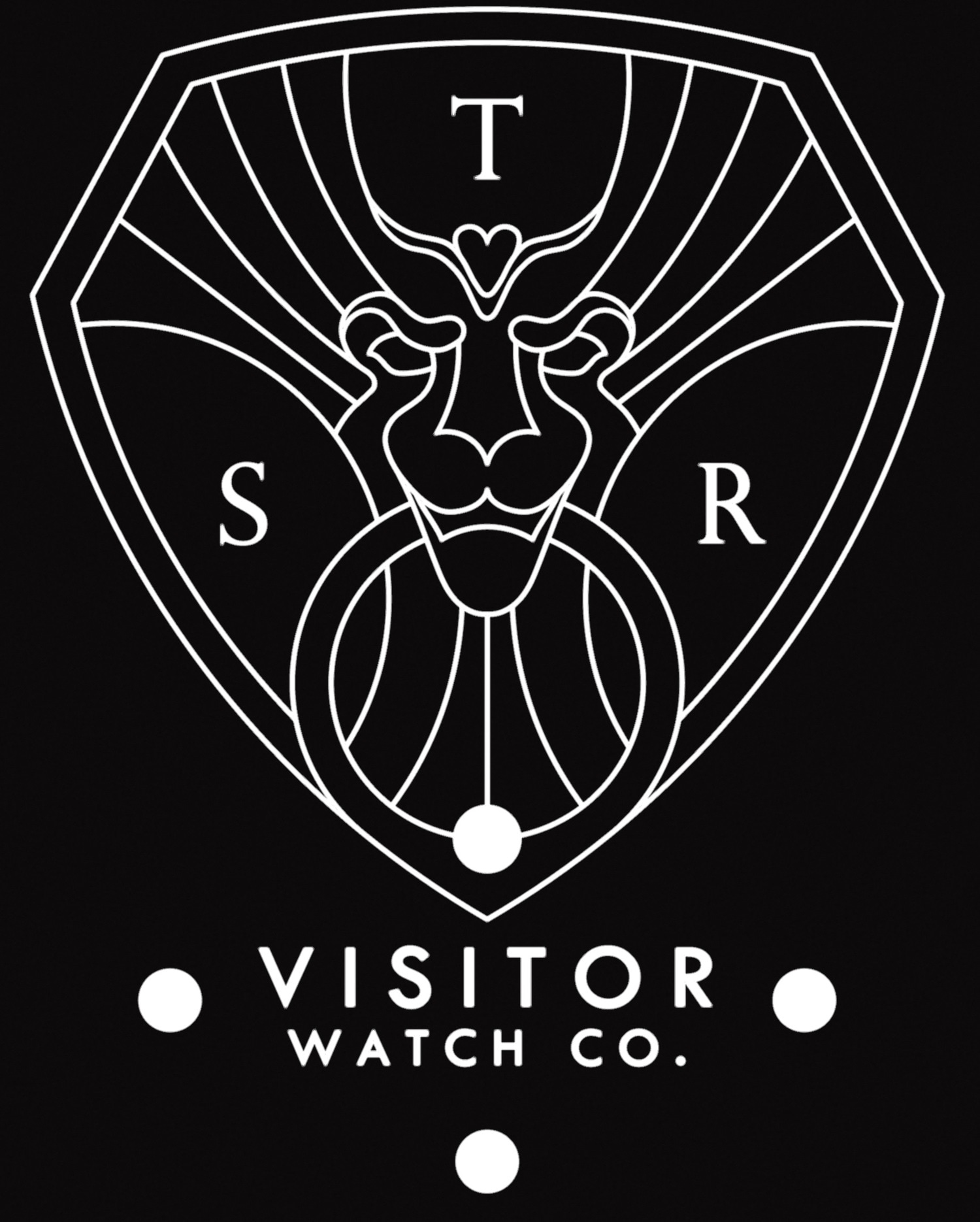 Visitor Watch Co. promo codes